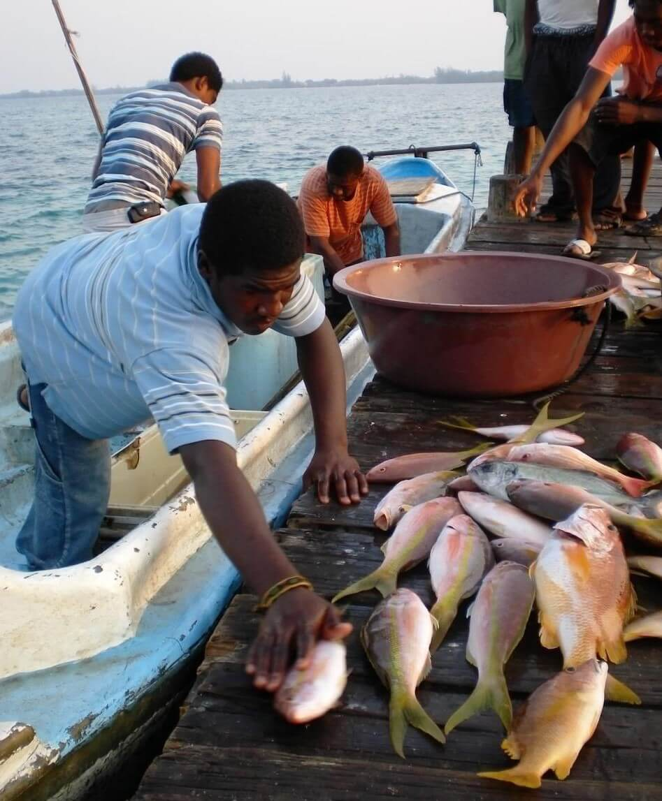 See How Smithsonian Is Working with Local Fishermen to Protect Marine Areas and Create Safe Fisheries